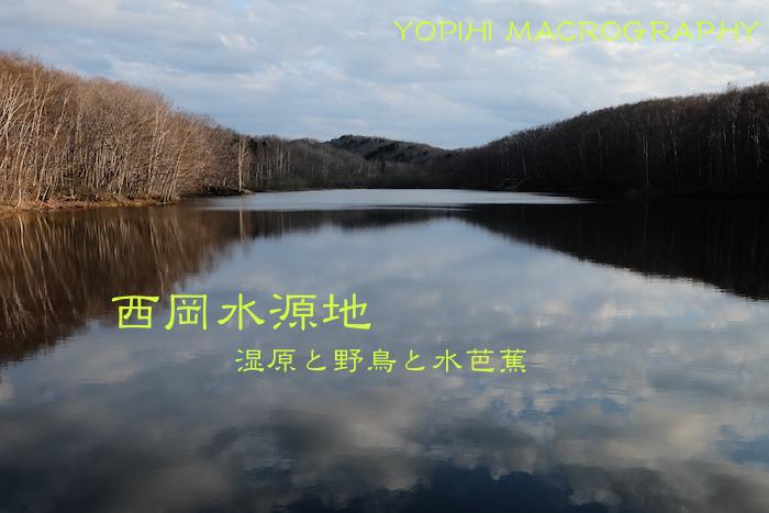 nishioka-park