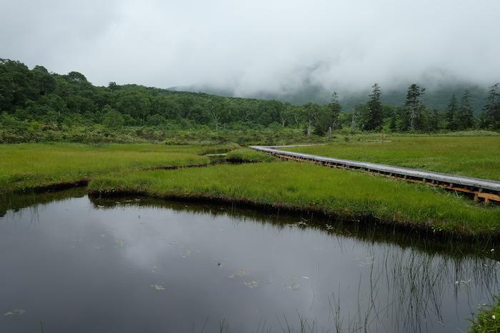 神仙沼湿原