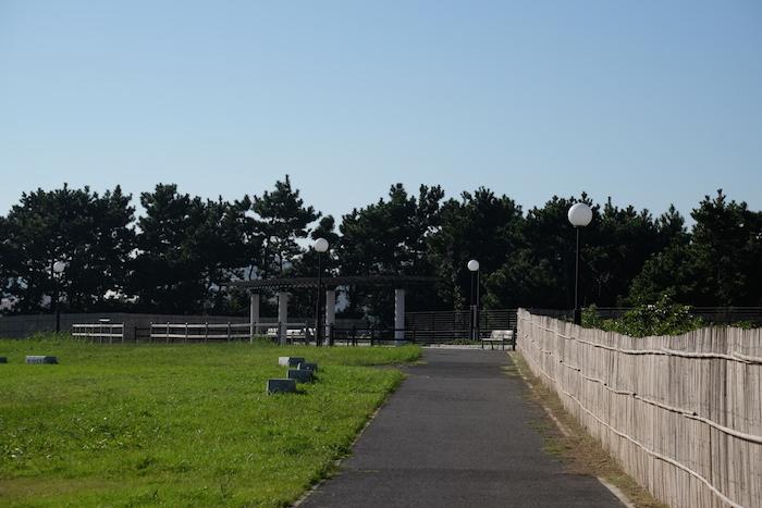 墓地公園展望台