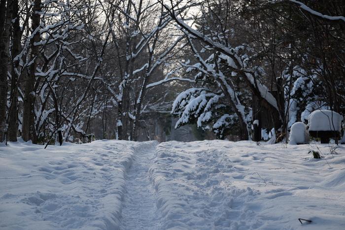 登満別園地【冬】